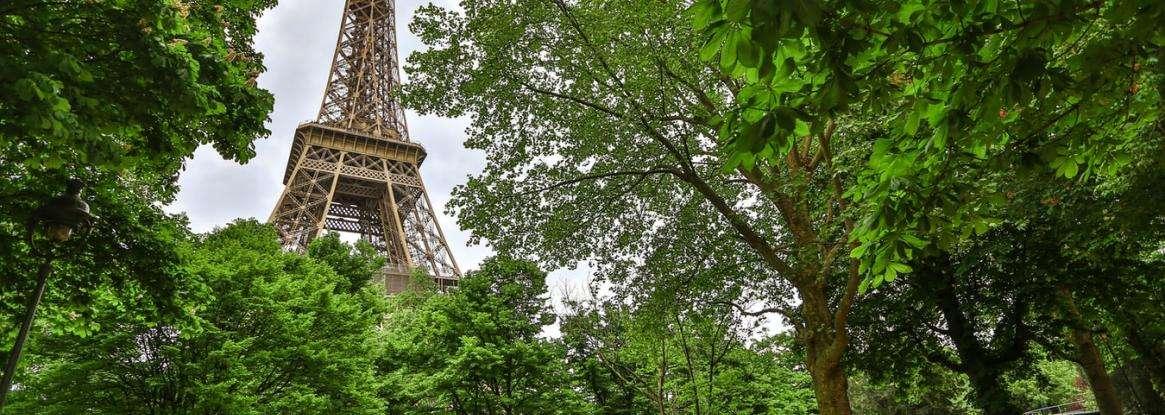 A green break in the heart of Paris