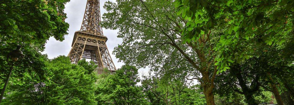 A green break in the heart of Paris