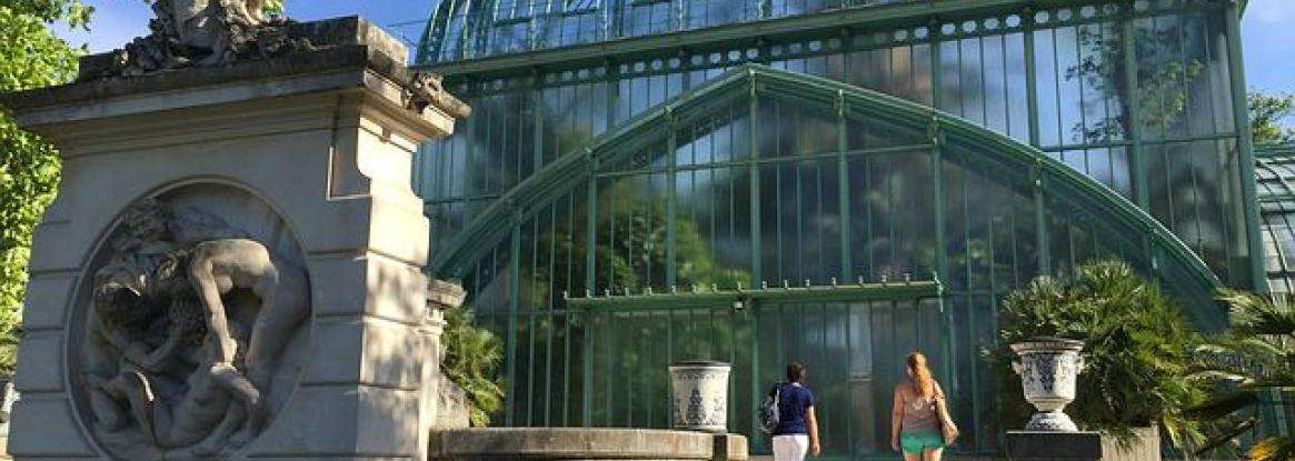 The Jardin des Serres d'Auteuil; exotic plant life flourishing in Paris